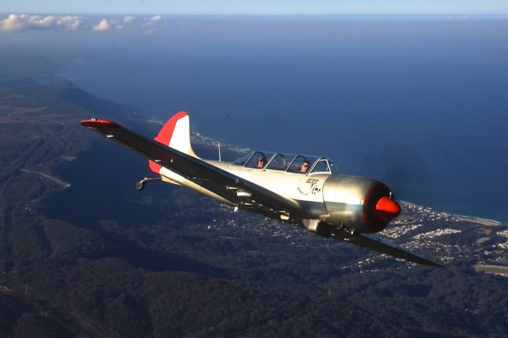 Yak 52TW in flight
